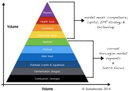 Value_pyramid_ENG